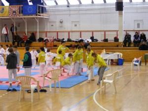 Hinode_Karate_SKI_2012_04