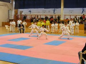 Hinode_Karate_SKI_2012_05