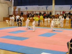 Hinode_Karate_SKI_2012_06