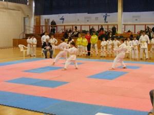Hinode_Karate_SKI_2012_07