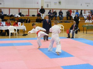 Hinode_Karate_SKI_2012_10
