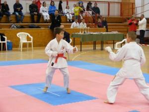 Hinode_Karate_SKI_2012_12