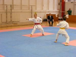 Hinode_Karate_SKI_2012_14