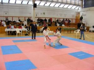 Hinode_Karate_SKI_2012_15