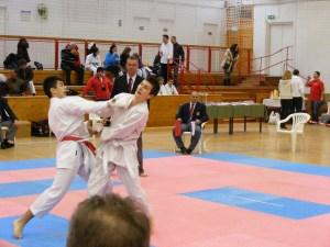 Hinode_Karate_SKI_2012_22