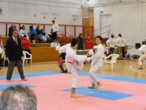 Hinode_Karate_SKI_2012_23