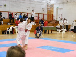 Hinode_Karate_SKI_2012_25