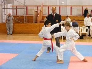 Hinode_Karate_SKI_2012_30