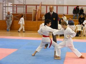 Hinode_Karate_SKI_2012_31
