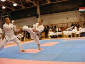 Hinode_Karate_SKI_2012_71