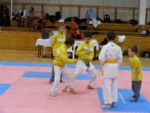 Hinode_Karate_SKI_2012_73
