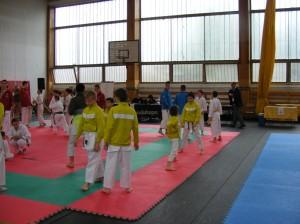 hinode_karate_2013_sarvar_01