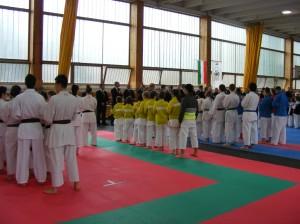 Hinode Karate 2013 Sárvár