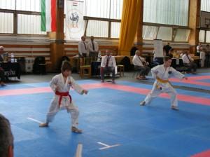 hinode_karate_2013_sarvar_05