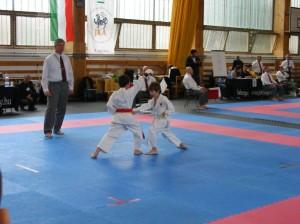 hinode_karate_2013_sarvar_07