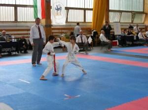 hinode_karate_2013_sarvar_08