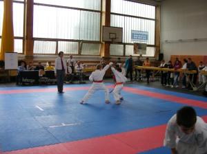 hinode_karate_2013_sarvar_10