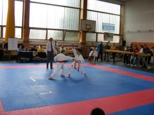 hinode_karate_2013_sarvar_11