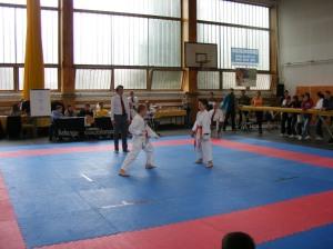 hinode_karate_2013_sarvar_12