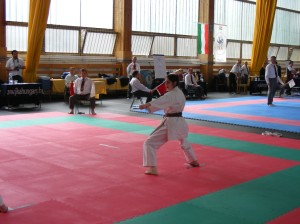 hinode_karate_2013_sarvar_15