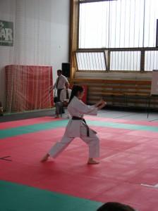 hinode_karate_2013_sarvar_17