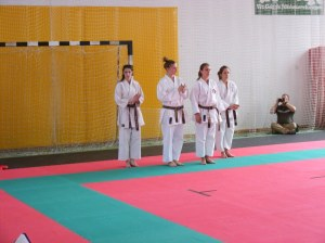 hinode_karate_2013_sarvar_19
