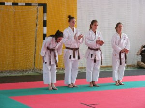 hinode_karate_2013_sarvar_20