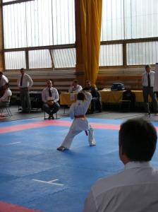 hinode_karate_2013_sarvar_21