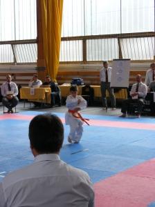 hinode_karate_2013_sarvar_22