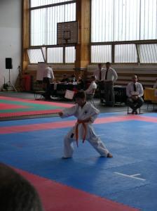 hinode_karate_2013_sarvar_23