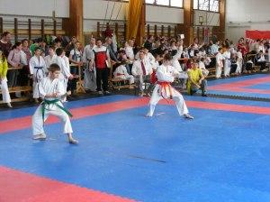 hinode_karate_2013_sarvar_26