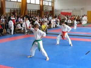 hinode_karate_2013_sarvar_27
