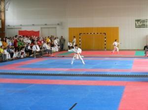 hinode_karate_2013_sarvar_28