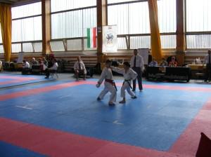 hinode_karate_2013_sarvar_33