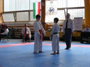 hinode_karate_2013_sarvar_34