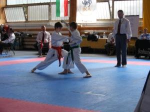 hinode_karate_2013_sarvar_35