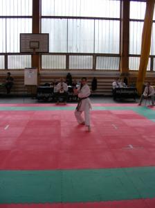 hinode_karate_2013_sarvar_41