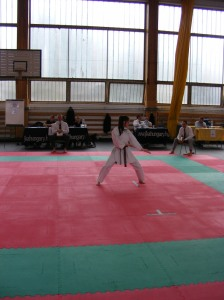 hinode_karate_2013_sarvar_42