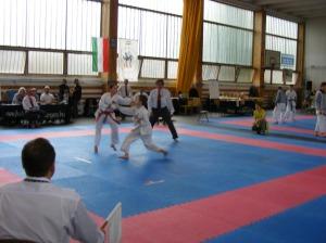 hinode_karate_2013_sarvar_45