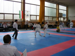 hinode_karate_2013_sarvar_48