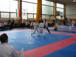 hinode_karate_2013_sarvar_49