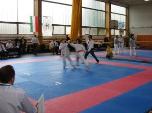 hinode_karate_2013_sarvar_50