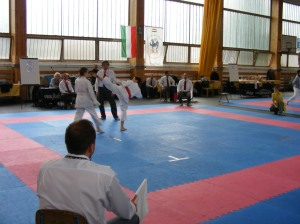 hinode_karate_2013_sarvar_51