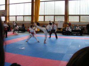 hinode_karate_2013_sarvar_52