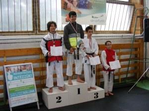 hinode_karate_2013_sarvar_55