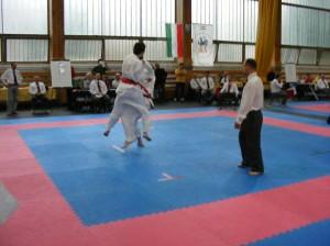 hinode_karate_2013_sarvar_58