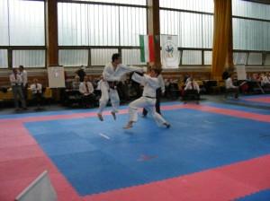 hinode_karate_2013_sarvar_59