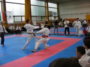 hinode_karate_2013_sarvar_60