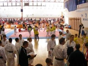 hinode_karate_2013_batta_001