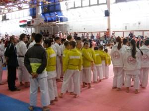 hinode_karate_2013_batta_004